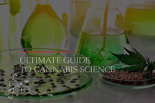 The Ultimate Guide to Cannabis Science