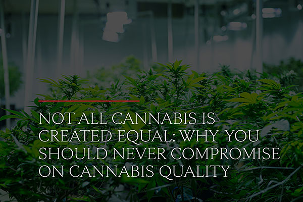 Not all cannabis is created equal