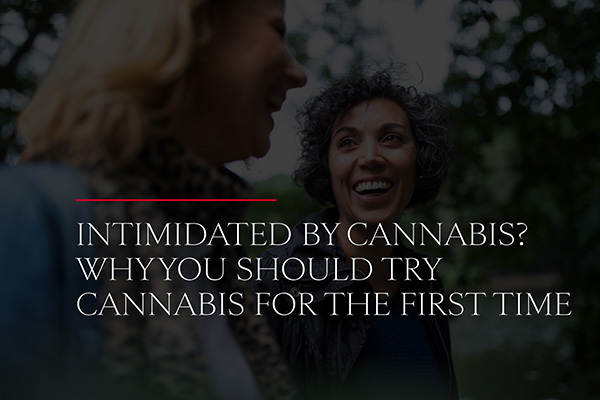 Intimidated by Cannabis? Why You Should Try Cannabis for the First Time