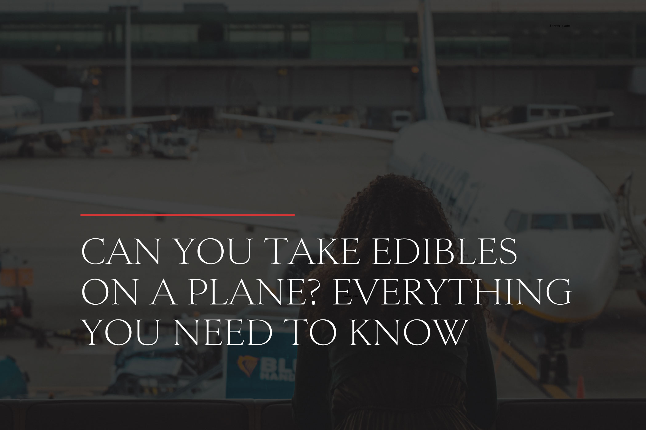Can you take edibles on a plane?