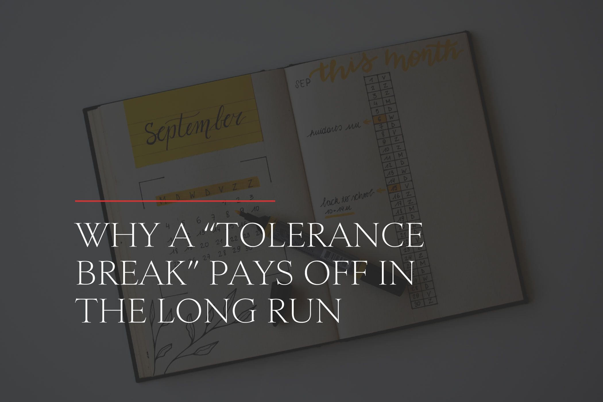 """Why a Weed """"Tolerance Break"""" Pays Off in the Long Run"""