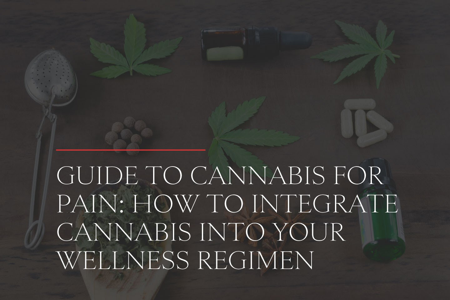 Guide to Cannabis for Pain: How to Integrate Cannabis into Your Wellness Regimen