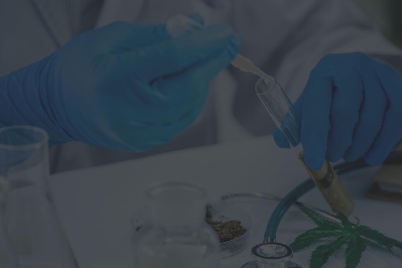 Medical Marijuana Use in Massachusetts